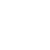 FINALCAD(飞立得)数据分析系统